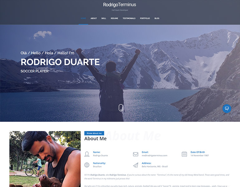 wordpress cv theme