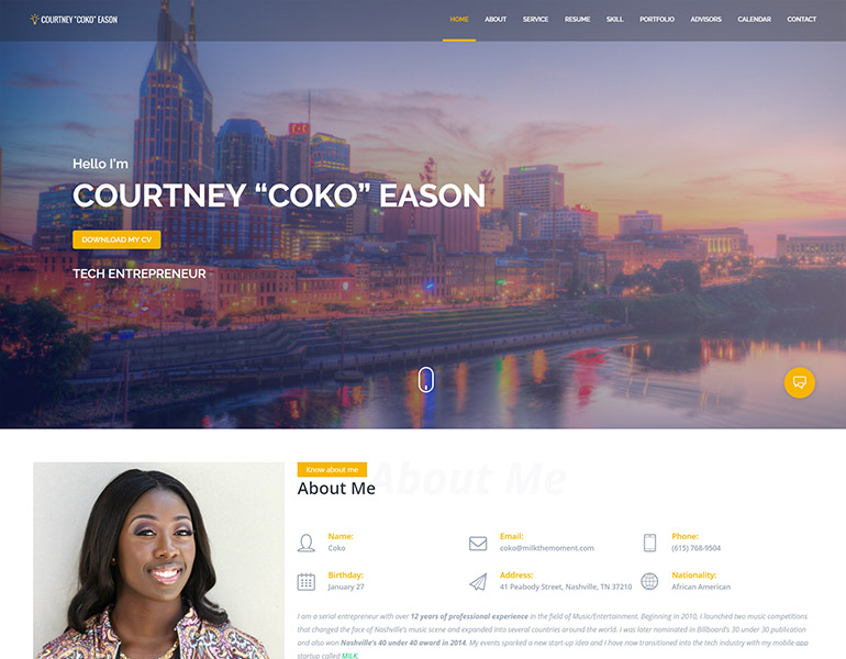 cv wordpress themes