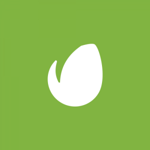 envato resume wordpress themes 1